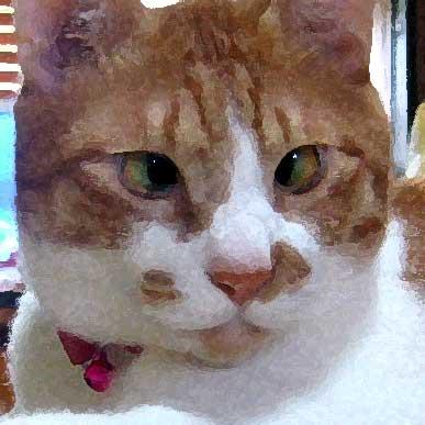 猫、水彩画風