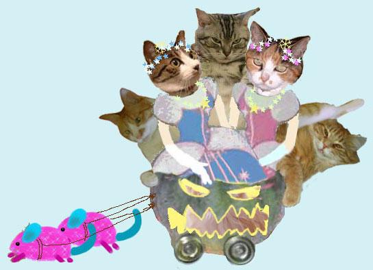 猫加工画像