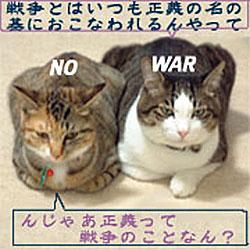反戦猫たち no war cats