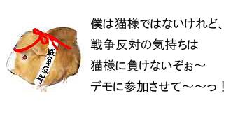 反戦モルモット no war guinea pig