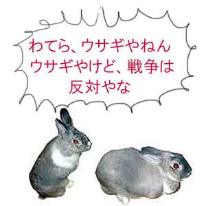 反戦うさぎ no war rabbits