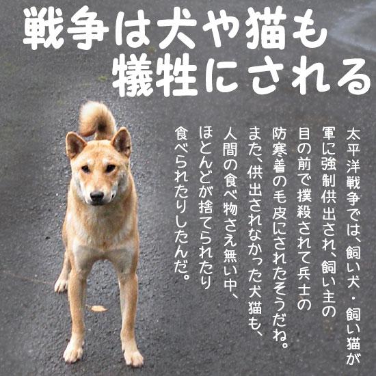 戦争反対・テロ反対の犬 (c)nekohon