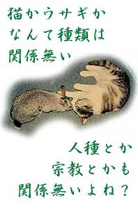 反戦猫ウサギ no war cat