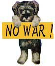 反戦犬 no war dog