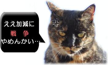 反戦猫 no war cats
