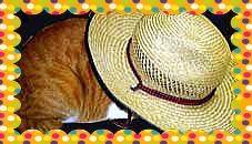 トロ麦わら帽子をかぶる