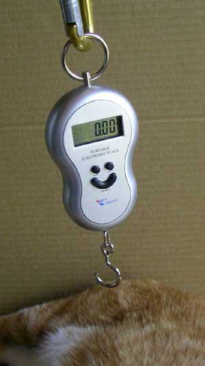猫の体重測定用はかり