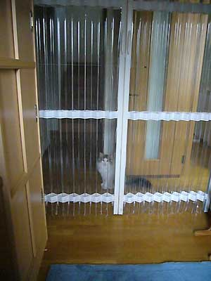 猫の脱走防止策