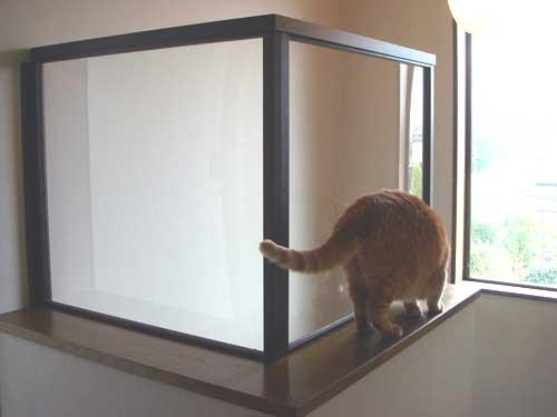 猫の落下防止
