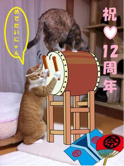 太鼓をたたく猫達