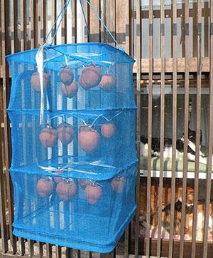 乾物ネットの中の干し柿