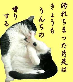 猫「汚れちまった片足は今日もうんちの香りする」