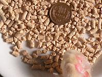 ヒノキ ネオ砂