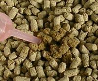 ひの木の猫砂スーパーハード