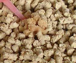 ひのきとおからの流せる猫砂