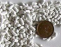 クマ笹の紙砂