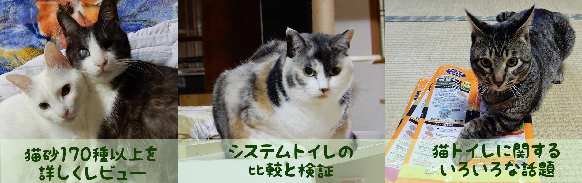 猫砂レポート