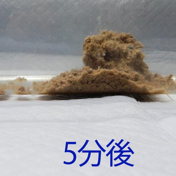 ガッチリ固まってトイレに流せる猫砂