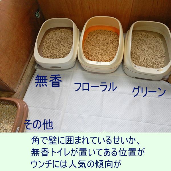 トイレ4つ