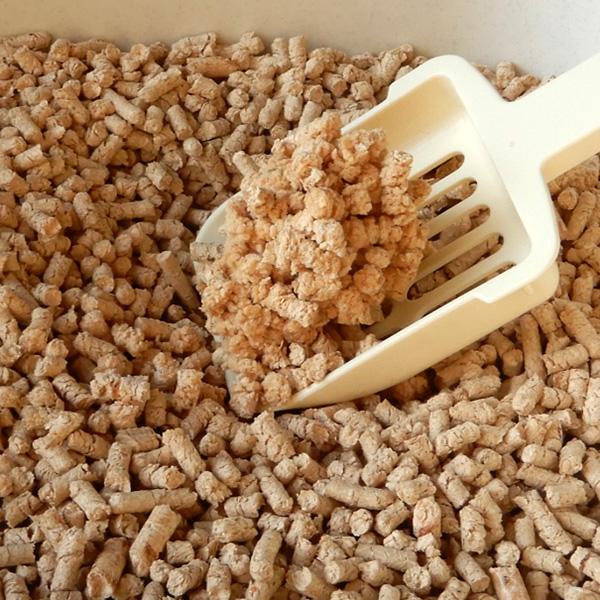 しっかり消臭するひのきの猫砂
