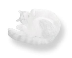猫イラスト、薄い色 cat