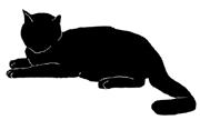 lay7 猫シルエット Cat Silhouette