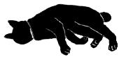 lay9 猫シルエット Cat Silhouette