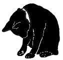 sit12 猫シルエット Cat Silhouette