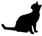 sit20 猫シルエット Cat Silhouette