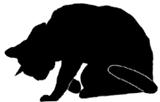 sit31 猫シルエット Cat Silhouette