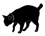 walk14 猫シルエット Cat Silhouette