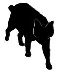 walk2 猫シルエット Cat Silhouette