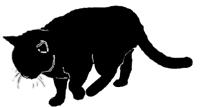 walk8 猫シルエット Cat Silhouette