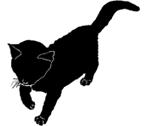 walk9 猫シルエット Cat Silhouette