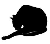 wash10 猫シルエット Cat Silhouette