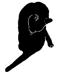 wash3 猫シルエット Cat Silhouette