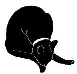 wash5 猫シルエット Cat Silhouette