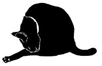 wash6 猫シルエット Cat Silhouette