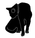 wash7 猫シルエット Cat Silhouette