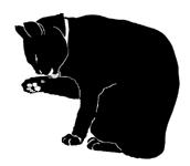 wash8 猫シルエット Cat Silhouette