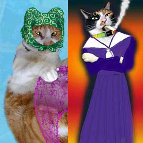 コスプレした猫たち(加工)
