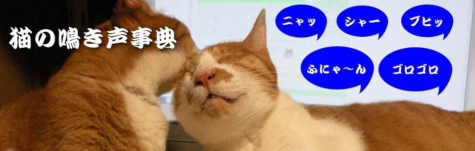 猫の鳴き声
